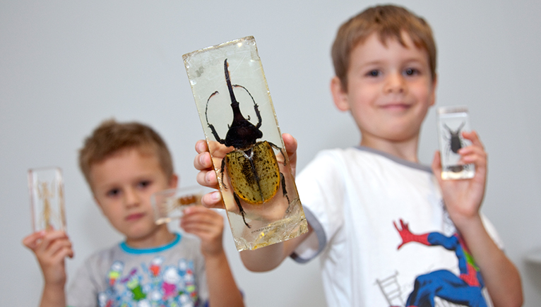 Investigate for families workshops let kids become the scientists for the day.