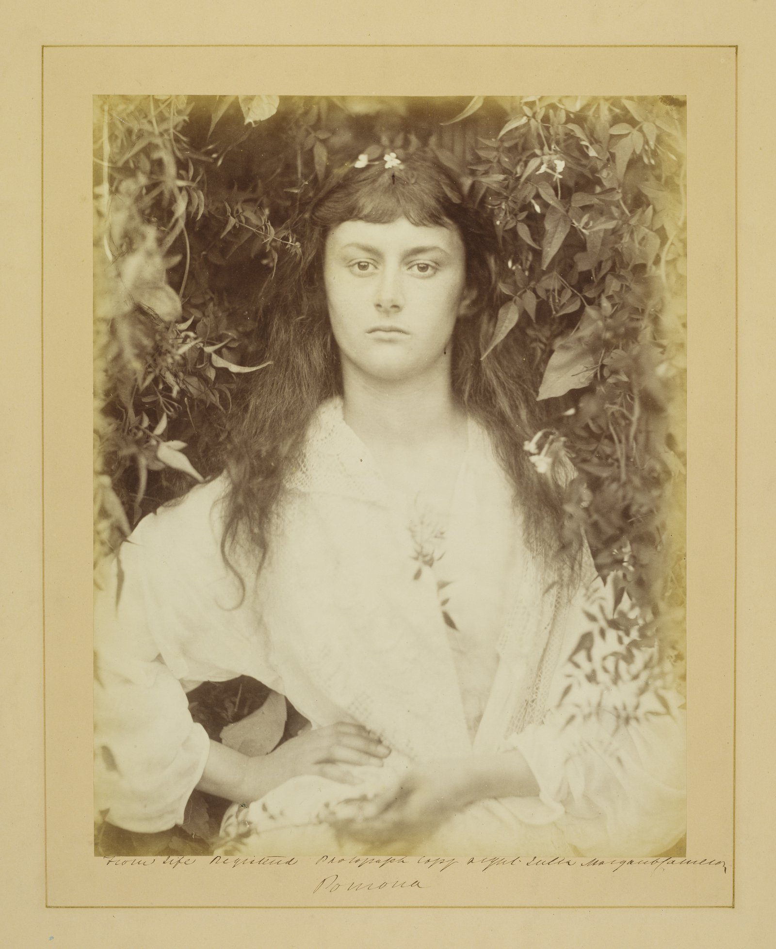 Julia Margaret Cameron, Pomona, 1887, Albumen print, © The RPS Collection at the Victoria and Albert Museum, London